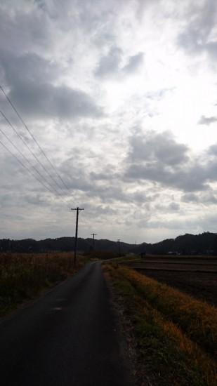 DSC_0415 (1)